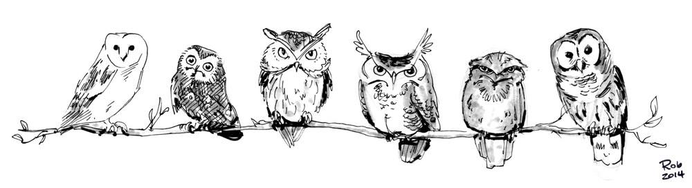09-owls